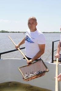 Ученые выпустили в бассейн Каспийского моря молодь осетровых рыб