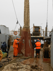 """Research vessel """"Vilnius"""" with a scientific group onboard took part in the international ecosystem survey in Northern Seas"""