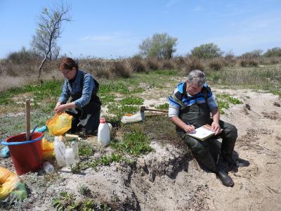 Ученые провели исследования беспозвоночных в гипергалинных водоемах Республики Крым