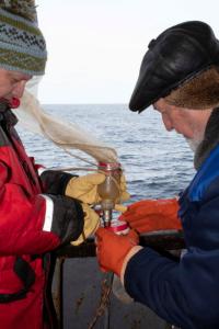 Отбор планктонных проб